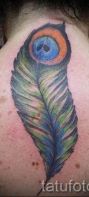 фото пример варианта тату с пером павлина – для статьи про значение это татуировки 15