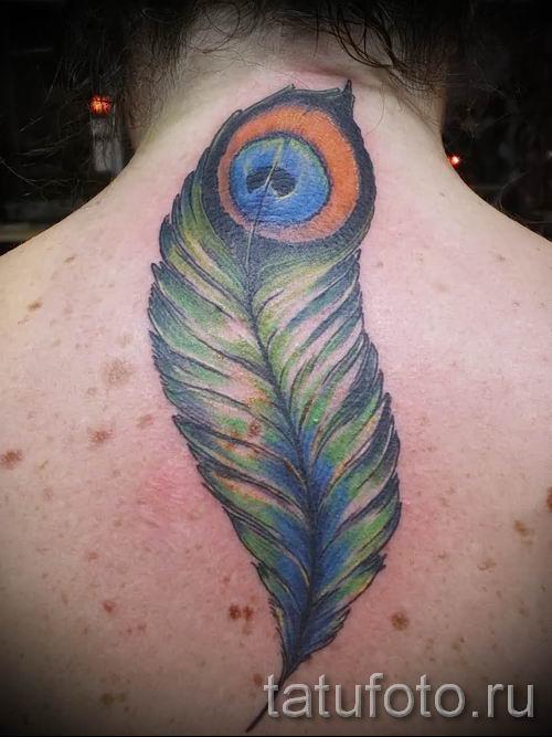 фото пример варианта тату с пером павлина - для статьи про значение это татуировки 15