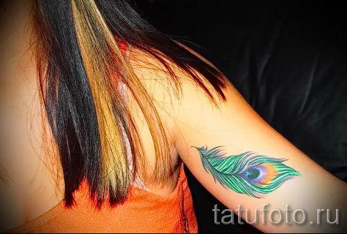 фото пример варианта тату с пером павлина - для статьи про значение это татуировки 17