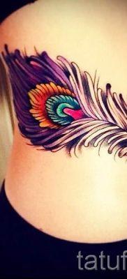 фото пример варианта тату с пером павлина – для статьи про значение это татуировки 19