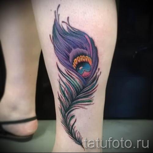 фото пример варианта тату с пером павлина - для статьи про значение это татуировки 23