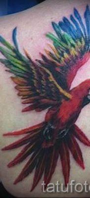 фото пример тату попугай для статьи про значение тату с попугаем – 3
