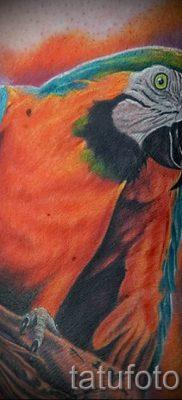 фото пример тату попугай для статьи про значение тату с попугаем – 7