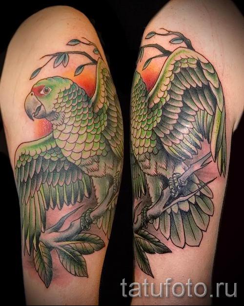 фото пример тату попугай для статьи про значение тату с попугаем - 8
