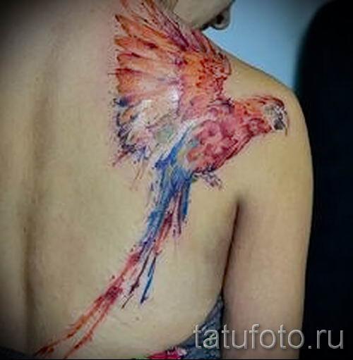 фото пример тату попугай для статьи про значение тату с попугаем - 11