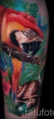 фото пример тату попугай для статьи про значение тату с попугаем – 13