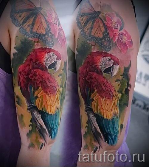 фото пример тату попугай для статьи про значение тату с попугаем - 14