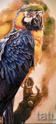 фото пример тату попугай для статьи про значение тату с попугаем – 16