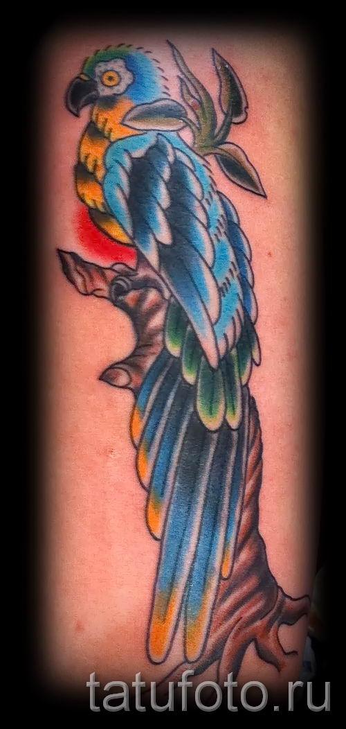 фото пример тату попугай для статьи про значение тату с попугаем - 17