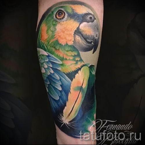 фото пример тату попугай для статьи про значение тату с попугаем - 19