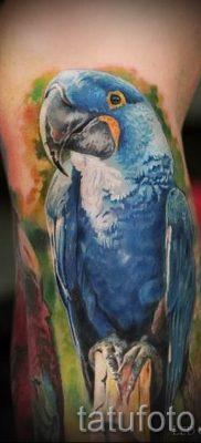 фото пример тату попугай для статьи про значение тату с попугаем – 21