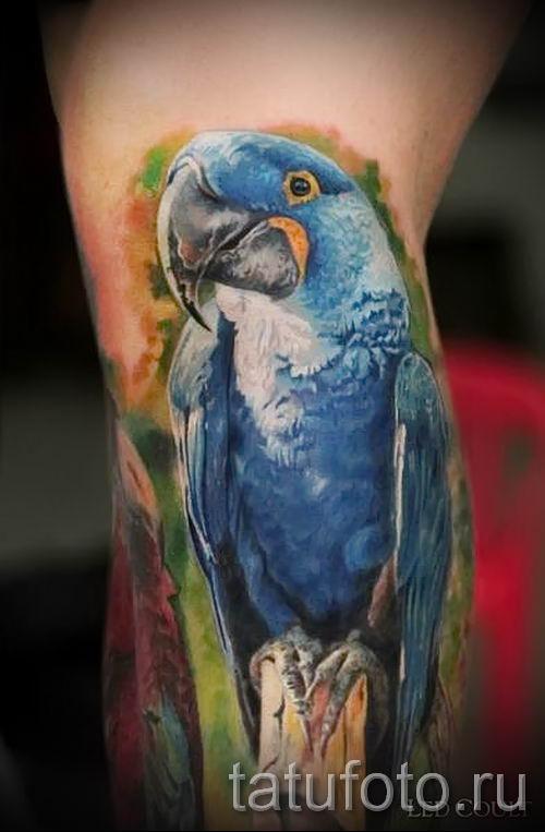 фото пример тату попугай для статьи про значение тату с попугаем - 21