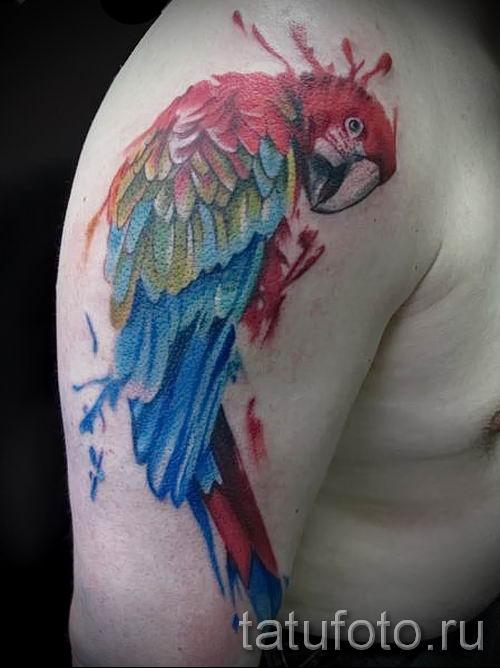 фото пример тату попугай для статьи про значение тату с попугаем - 24