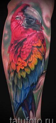 фото пример тату попугай для статьи про значение тату с попугаем – 25