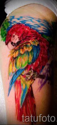 фото пример тату попугай для статьи про значение тату с попугаем – 28