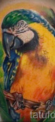 фото пример тату попугай для статьи про значение тату с попугаем – 30