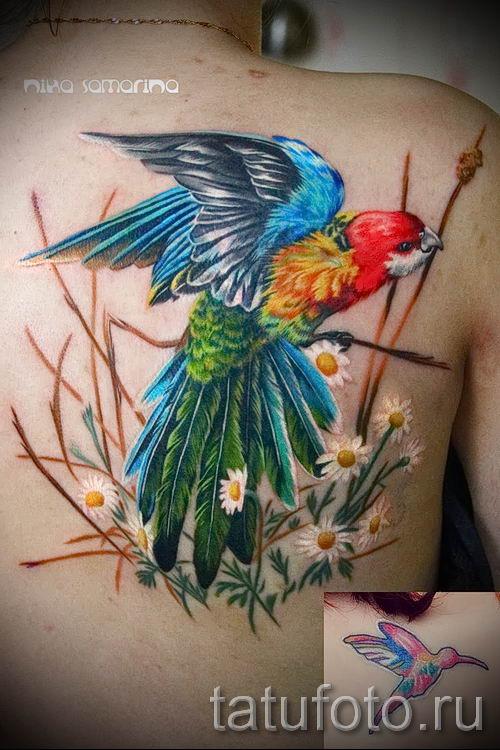 фото пример тату попугай для статьи про значение тату с попугаем - 36