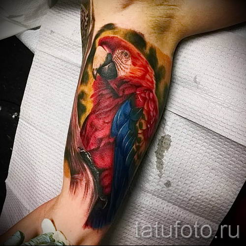 фото пример тату попугай для статьи про значение тату с попугаем - 39