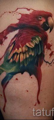 фото пример тату попугай для статьи про значение тату с попугаем – 42