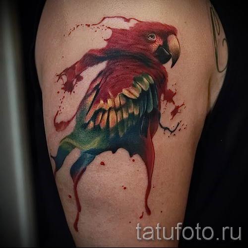 фото пример тату попугай для статьи про значение тату с попугаем - 42