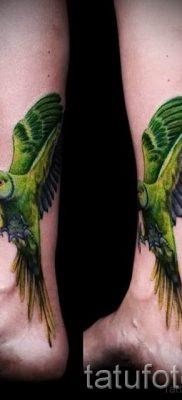 фото пример тату попугай для статьи про значение тату с попугаем – 43
