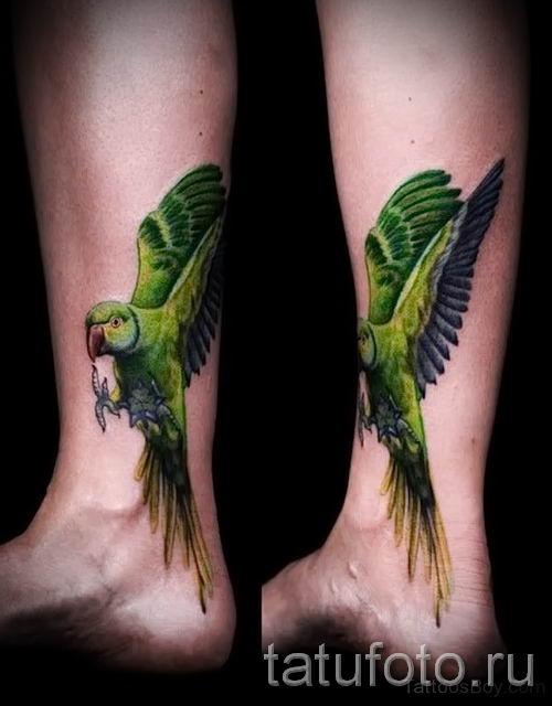 фото пример тату попугай для статьи про значение тату с попугаем - 43