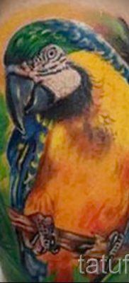 фото пример тату попугай для статьи про значение тату с попугаем – 44