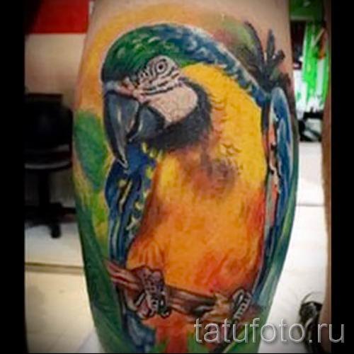 фото пример тату попугай для статьи про значение тату с попугаем - 44