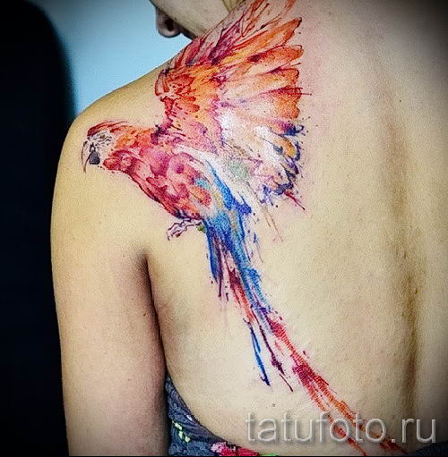 фото пример тату попугай для статьи про значение тату с попугаем - 46