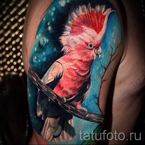 фото пример тату попугай для статьи про значение тату с попугаем - 49