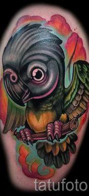 фото пример тату попугай для статьи про значение тату с попугаем – 50