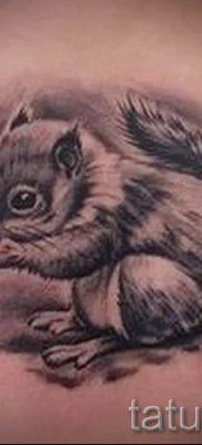 фото тату белка для статьи про значение татуировки с белкой – tatufoto.ru – 1