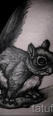 фото тату белка для статьи про значение татуировки с белкой – tatufoto.ru – 4