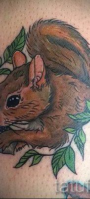 фото тату белка для статьи про значение татуировки с белкой – tatufoto.ru – 8
