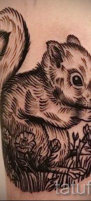 фото тату белка для статьи про значение татуировки с белкой – tatufoto.ru – 10