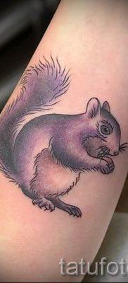 фото тату белка для статьи про значение татуировки с белкой – tatufoto.ru – 17