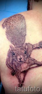 фото тату белка для статьи про значение татуировки с белкой – tatufoto.ru – 22