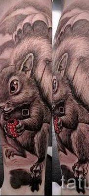 фото тату белка для статьи про значение татуировки с белкой – tatufoto.ru – 34