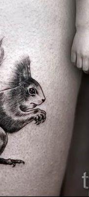 фото тату белка для статьи про значение татуировки с белкой – tatufoto.ru – 44