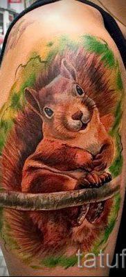 фото тату белка для статьи про значение татуировки с белкой – tatufoto.ru – 46