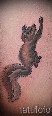 фото тату белка для статьи про значение татуировки с белкой – tatufoto.ru – 60