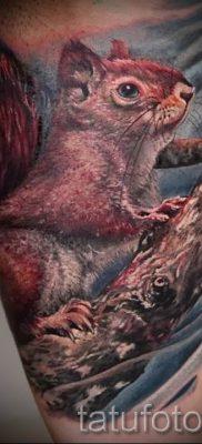 фото тату белка для статьи про значение татуировки с белкой – tatufoto.ru – 63