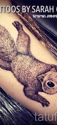 фото тату белка для статьи про значение татуировки с белкой – tatufoto.ru – 67