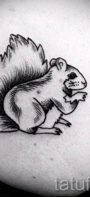 фото тату белка для статьи про значение татуировки с белкой – tatufoto.ru – 68