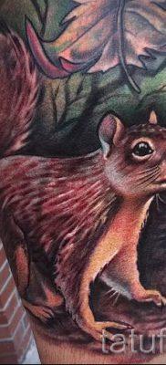 фото тату белка для статьи про значение татуировки с белкой – tatufoto.ru – 69
