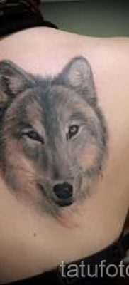 фото тату волчица для статьи про значение татуировки волчица – tatufoto.ru – 32