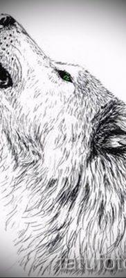 фото тату воющий волк для статьи про значение тату воющий волк – tatufoto.ru – 5