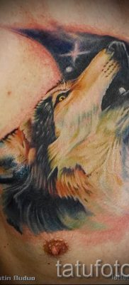 фото тату воющий волк для статьи про значение тату воющий волк – tatufoto.ru – 30