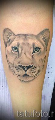 фото тату львица для статьи про значение татуировки львица – tatufoto.ru – 16