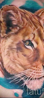 фото тату львица для статьи про значение татуировки львица – tatufoto.ru – 19